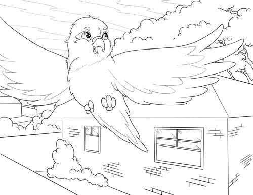 Murray and the Seagull Colouring Page 1