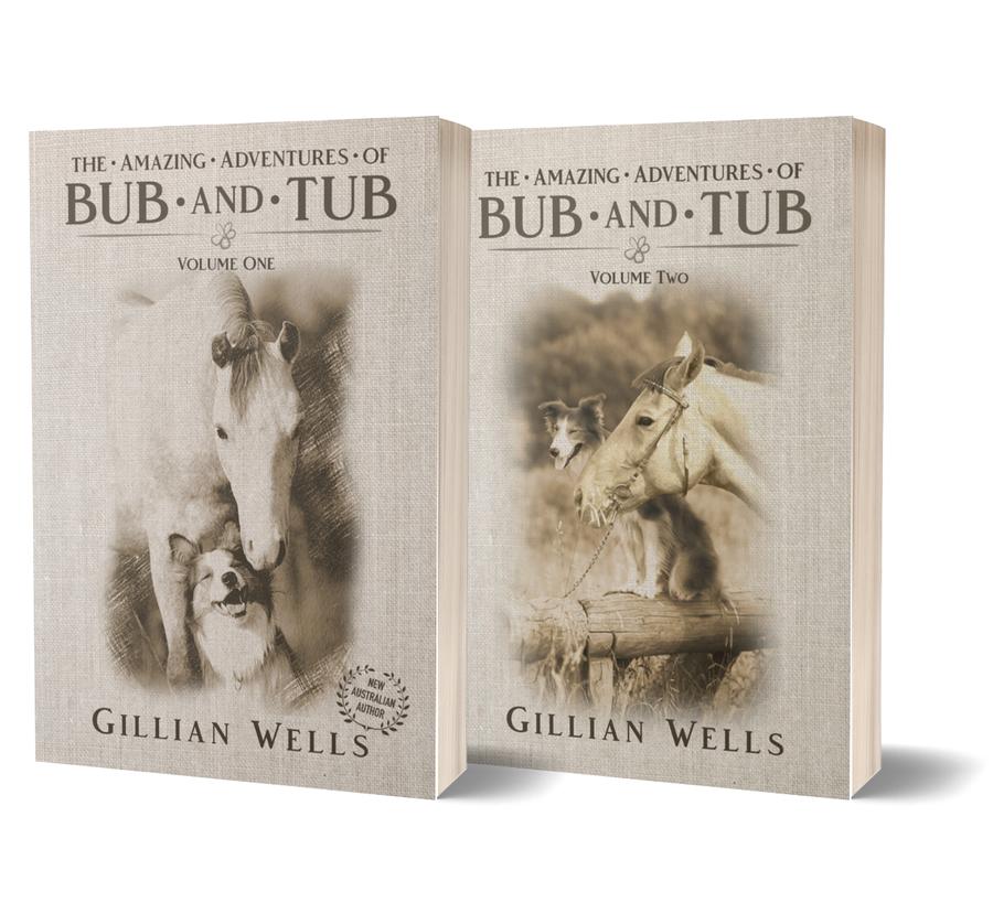 The Amazing Adventures of Bub andamp Tub Book Bundle